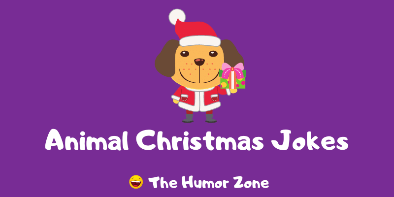Featured image for a page of funny animal Christmas jokes and puns.