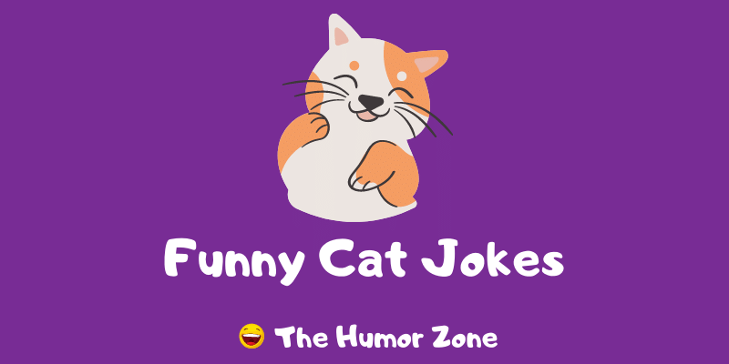 Featured image for a page of funny cat jokes and puns.