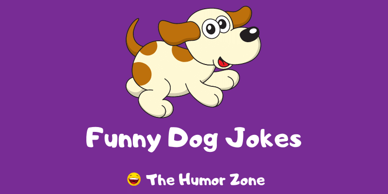 Featured image for a page of funny dog jokes and puns.