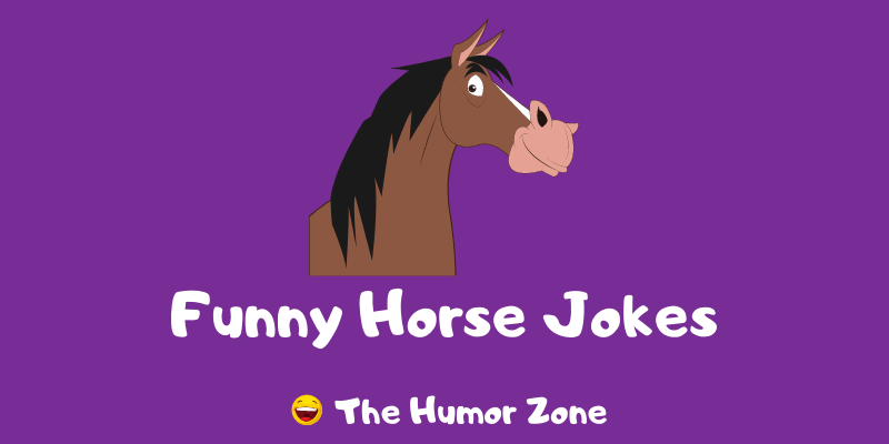 Featured image for a page of funny horse jokes and puns.