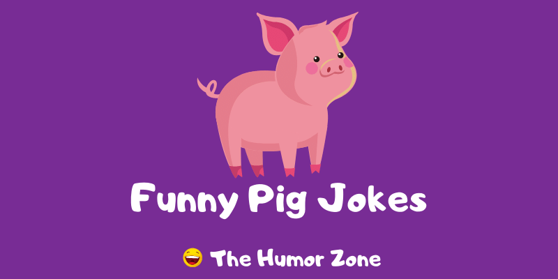 Featured image for a page of funny pig jokes and puns.
