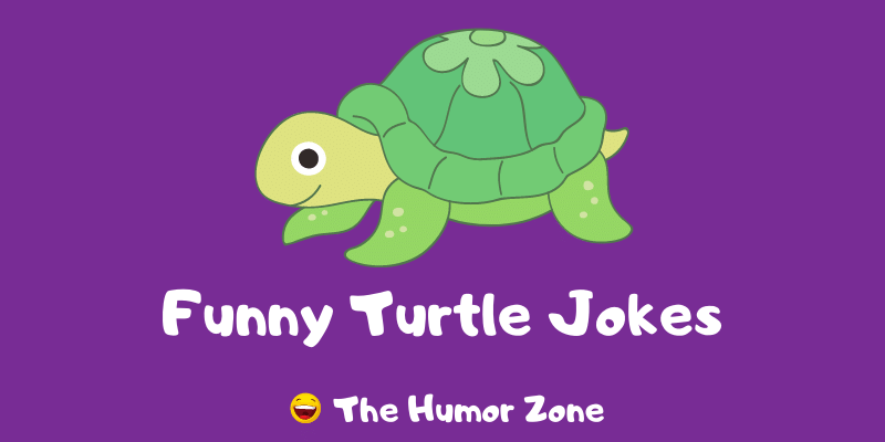 Featured image for a page of funny turtle jokes and puns.