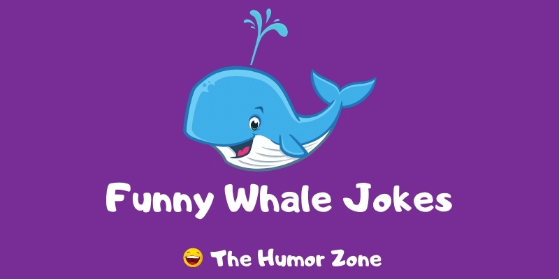 Featured image for a page of funny whale jokes and puns.